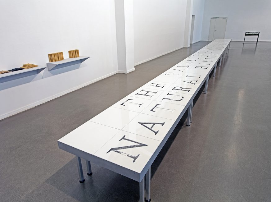 In this issue, 2015, installation view, Kunsthaus Hamburg, Hamburg, Germany