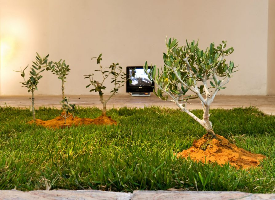 After 12 Years, 2008, installation view. Jerusalem Show 2011, Jerusalem, Palestine